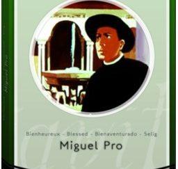 Bienheureux Miguel Pro (DVD)